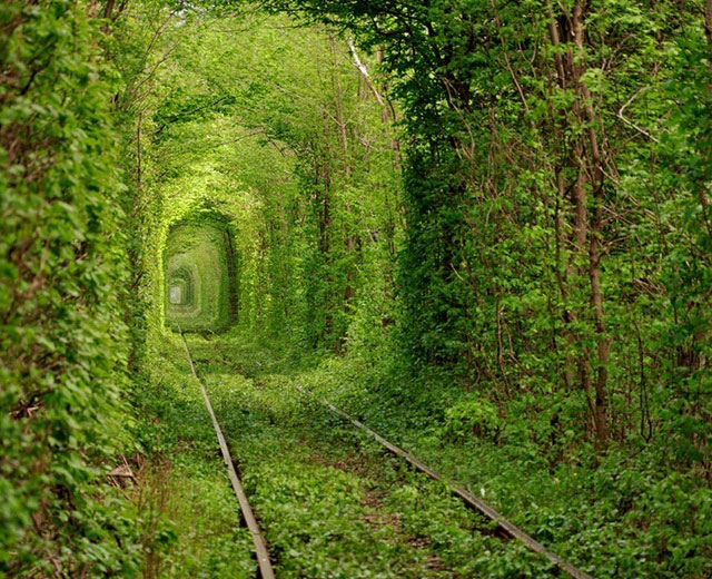 Tunnel dell'amore – Klevan, Ucraina